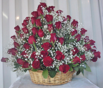 Damy Roses R0003
