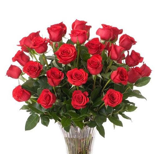 Damy Roses R0006
