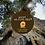 Thumbnail: Box EVOO 'My Yards' - Adopt-an-Olive-Tree