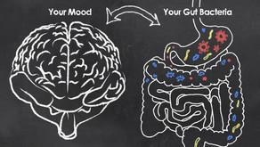 Gut-Brain Axis & Well-Balanced Posture