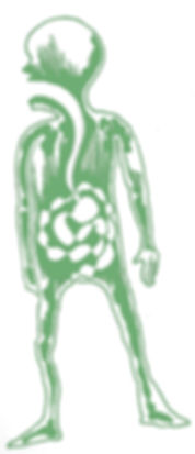 FG.4.jpg