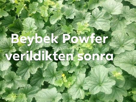 Güçlü Gübre Beybek Powfer Kütahya'da susuz arazide yapraktan kavuna uygulandı. Çiftçimiz Hüseyin
