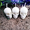 Set of 3 Spiritual Is Skull Candle to create the perfect mood for relaxation and spiritual healing on natural rock background