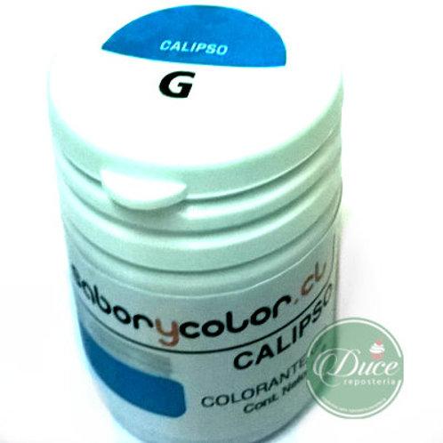 Colorante Gel Calipso Sabor y Color, 20 grs.