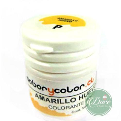 Colorante Polvo Amarillo Huevo Sabor y Color,15 grs.