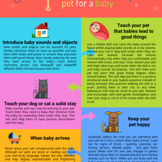 PREPARING YOUR PET FOR A BABY