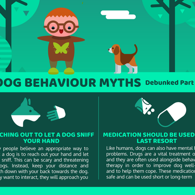 DOG BEHAVIOUR MYTHS 5