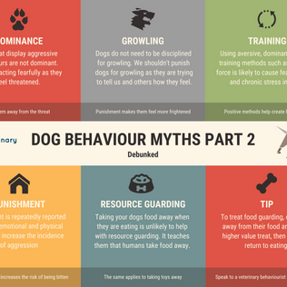 BEHAVIOUR MYTHS 2