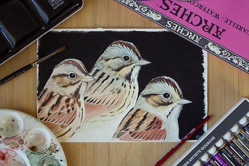 Three Sparrows | Original
