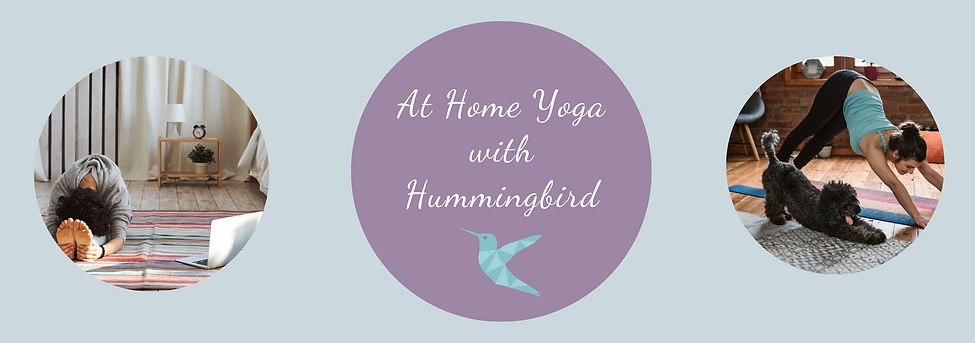 at home yoga with hummingbird (1).png