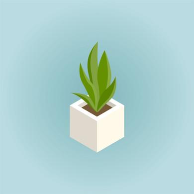 single_2-fakeplant.jpg