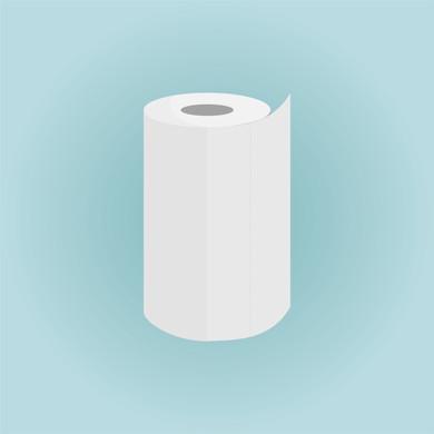 single_11-papertowel.jpg