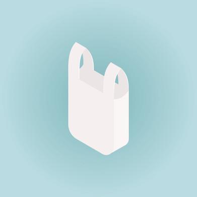 single_4-grocery bag.jpg