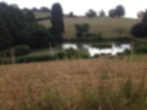 Batcombe Vale Campsite, Somerset