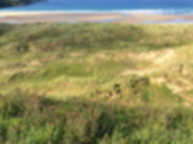 North Coast Strathy Beach
