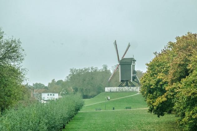 windmilll (1 of 1).jpg
