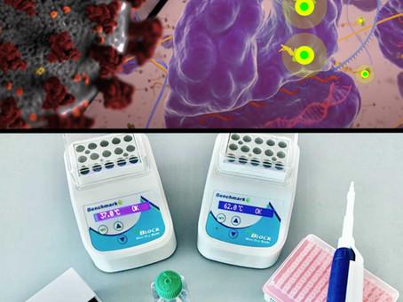 CRISPR and COVID-19: Will the Nobel prize winning technology revolutionize diagnostics?