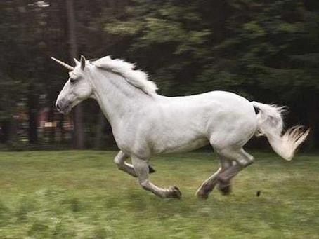 The Next Big Unicorns