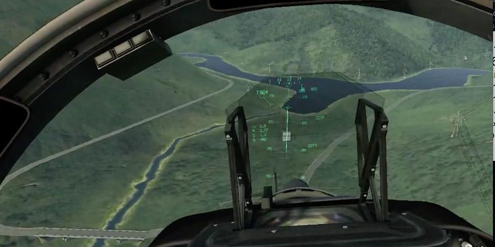 Exercise Lionheart- flight sim exercise-air combat training