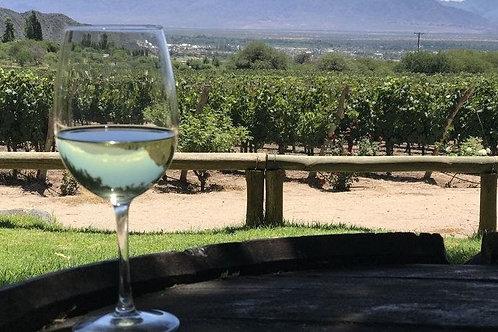 טיול חצי יום בדרכי היין הדרום, סן חואן