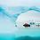 Thumbnail: Tras el Círculo Polar - 12 días - Salida 27/01/2021