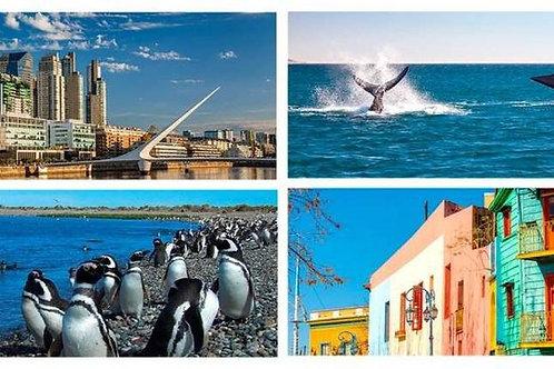 Puerto Madryn & Buenos Aires 5 días