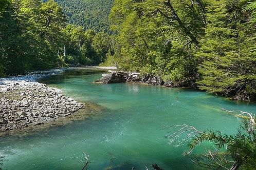 Día completo Parque Nacional Los Alercers - Esquel