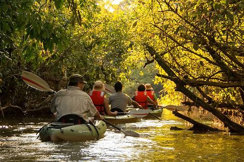Amazonia Ecuatoriana - Reserva Ecologica Yarina 5 días