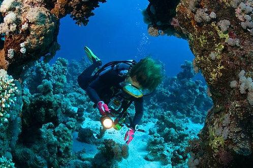 Diving in Guatemala - 8 days