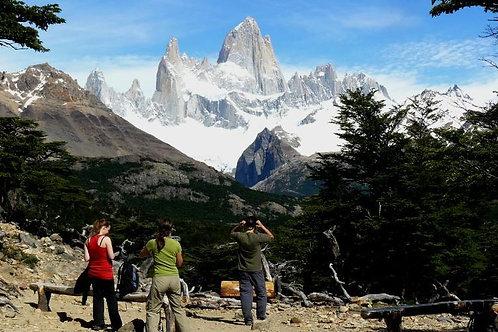 קרחון פריטו מורנו + צאלטן יום שלם