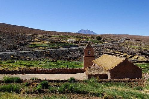 Día completo Lagunas Altiplánicas y Piedras Rojas - San Pedro de Atacama
