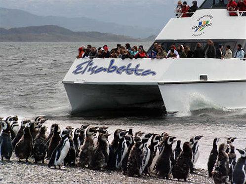ניווט פינגווין משולב של הרברטון