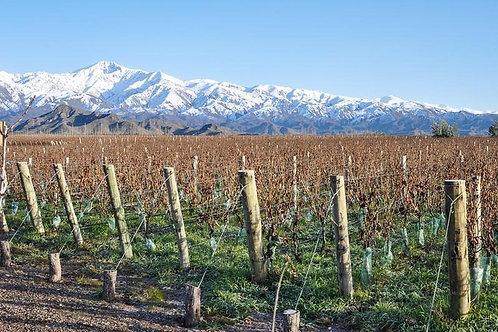 Uco Valley Experience - Mendoza