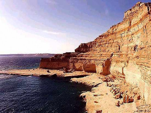 Día Completo Península de Valdés