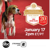 WirelessWednesday Exclusive: Rick talks AKC National Championship