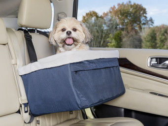 Pet Mobility market going high tech