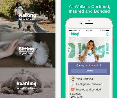 Wag! app arrives in Atlanta