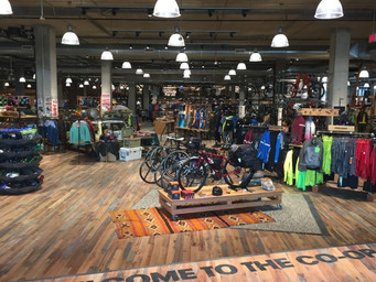REI goes 'all in' on 'online'