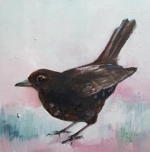 Mrs Blackbird