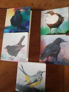 Square bird cards