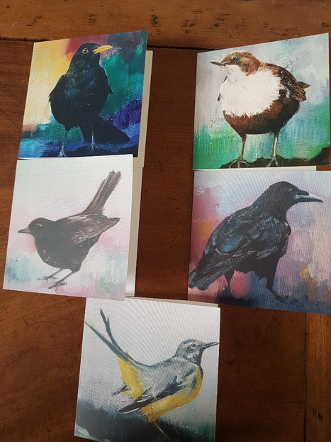 Square bird cards