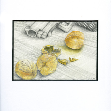 6.gun&nuts-13x9-colored pencil.jpg