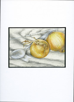 needles & onions-13x9-colored pencil