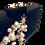 Thumbnail: Clutch Constelación