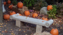 An Autumn SipNSing: 10/24/20, 4pm
