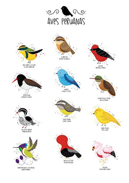 Aves peruanas