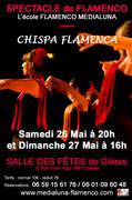 Affiche_spectacle_salle_des_fêtes_copie.jpg