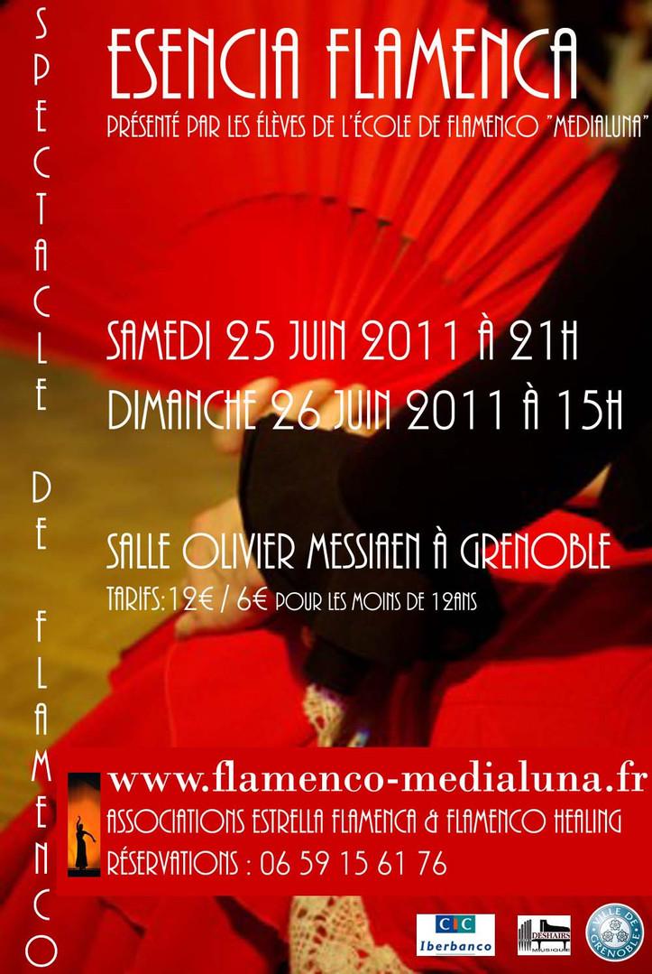 Affiche esencia flamenca2.jpg