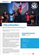 2-brochure_saisonculturelle_2017-2018_2650 - 3_edited.jpg