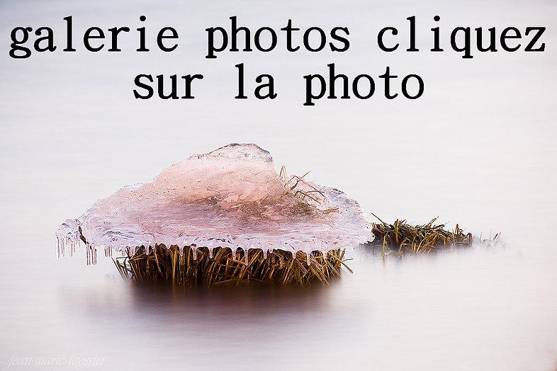 photo galerie.JPG